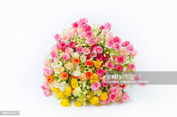 Close-Up Of Multi Colored Flowers Against White Background