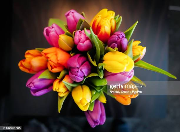 close-up of multi colored flowers - bunch of flowers stock pictures, royalty-free photos & images