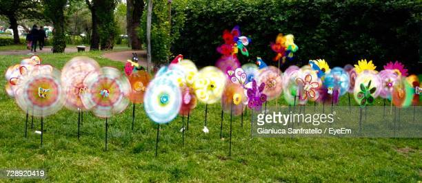 Close-Up Of Multi Colored Pinwheels In Field