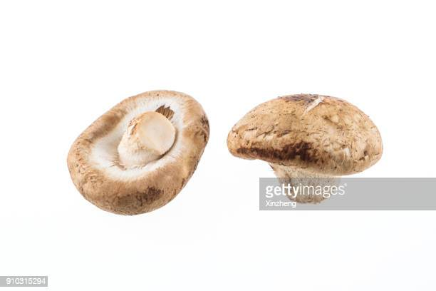 Close-Up Of Mushrooms On White Background