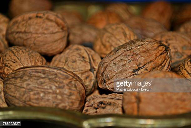close-up of nut - nutshell stock photos and pictures