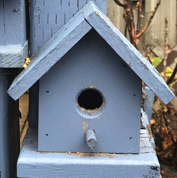 Close-Up Of Old Birdhouse