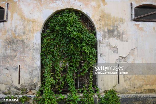 close-up of old door - shaifulzamri stock pictures, royalty-free photos & images