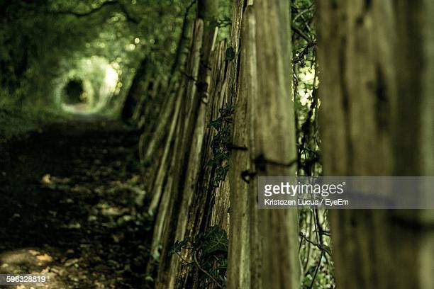 close-up of old fence on field - gillingham stock pictures, royalty-free photos & images