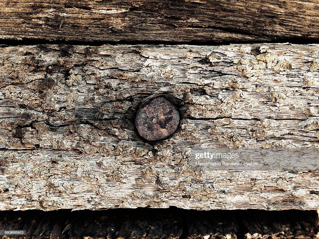 Close-Up Of Old Log : Stock Photo