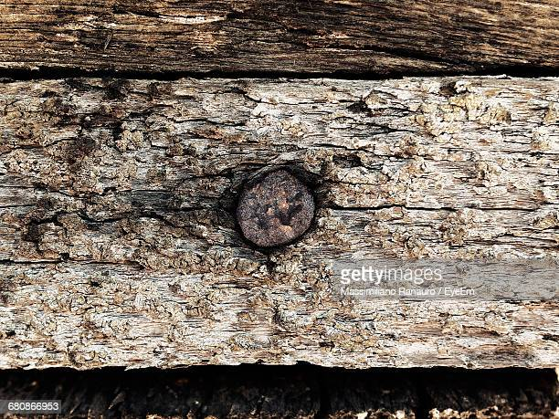Close-Up Of Old Log