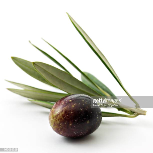 close-up of olive against white background - オリーブ ストックフォトと画像