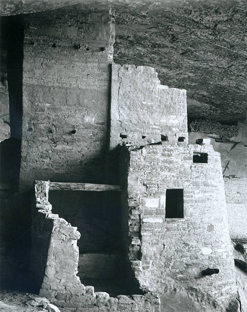 'Cliff Palace, Mesa Verde National Park'