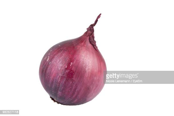 close-up of onion over white background - cebolla fotografías e imágenes de stock