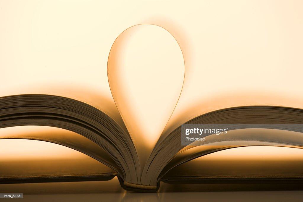Close-up of open book : Foto de stock