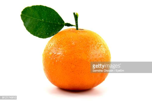 close-up of orange against white background - orange stock pictures, royalty-free photos & images