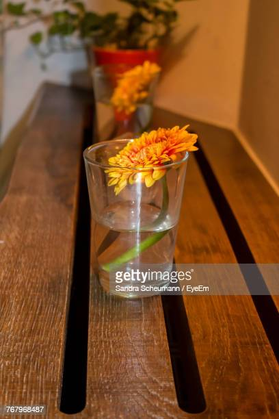 Close-Up Of Orange Flower In Drinking Glass On Table