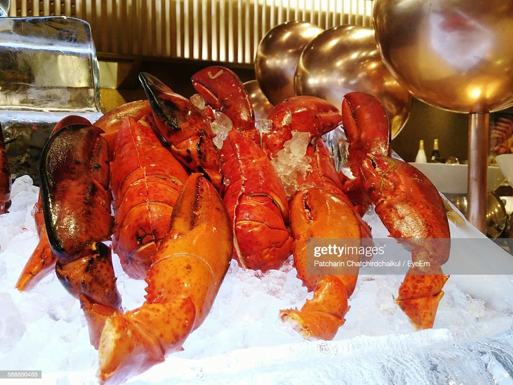 Close-Up Of Orange Lobsters In Cold Storage : Stock Photo