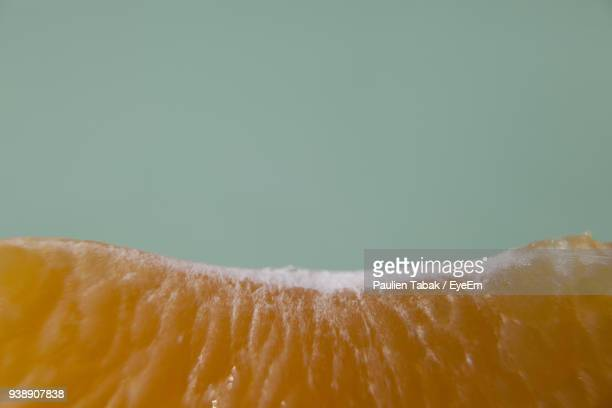 close-up of orange over colored background - paulien tabak stock pictures, royalty-free photos & images