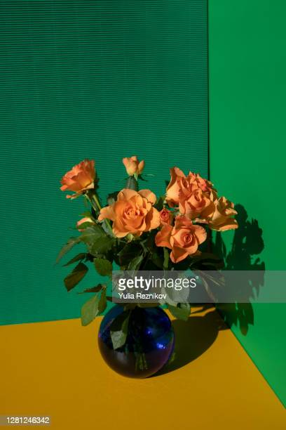 close-up of orange rose flowers in vase on the yellow-green background - green colour ストックフォトと画像