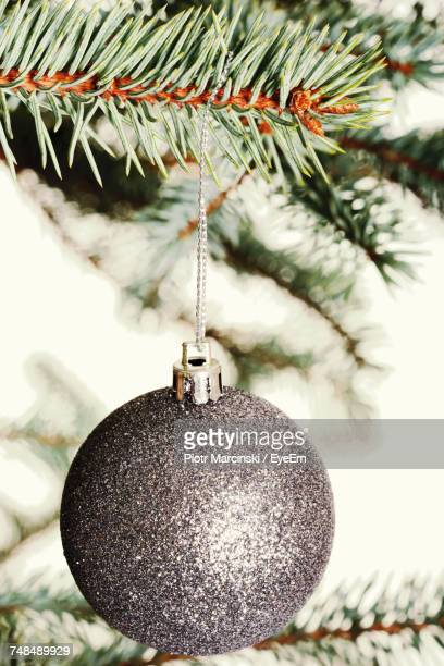 Close-Up Of Ornament Hanging On Christmas Tree