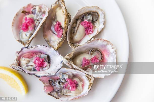 Close-Up Of Oysters Served In Plate On Table