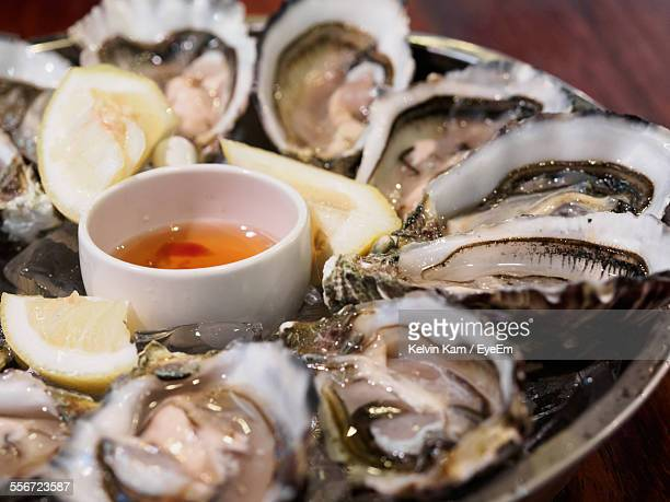 Close-Up Of Oysters Served In Plate