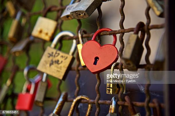 Close-Up Of Padlocks Attached On Metallic Fence