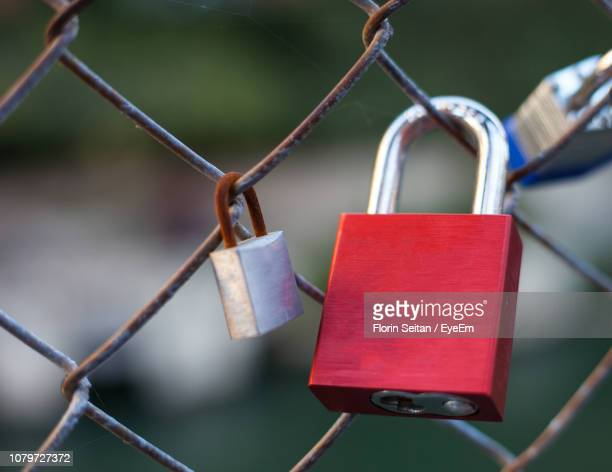close-up of padlocks hanging on chainlink fence - florin seitan stock pictures, royalty-free photos & images