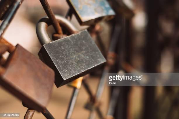 Close-up of padlocks on a metal fence