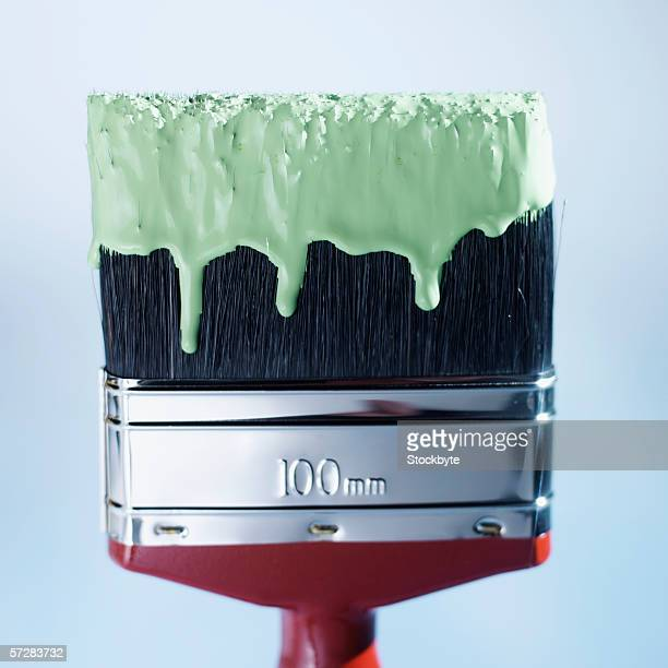 Close-up of paint brush dipped in green paint