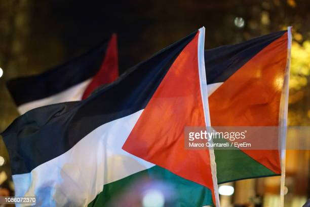 close-up of palestinian flags at night - palestinian flag stock pictures, royalty-free photos & images