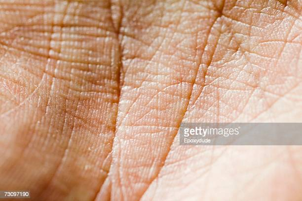 close-up of palm of hand - extreme close up stock pictures, royalty-free photos & images