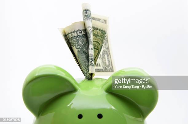 close-up of paper currency on green piggy bank against white background - making money stock pictures, royalty-free photos & images