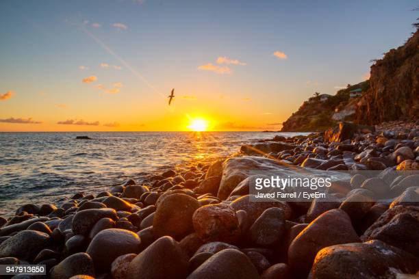 close-up of pebbles on beach against sky during sunset - st. kitts stock photos and pictures