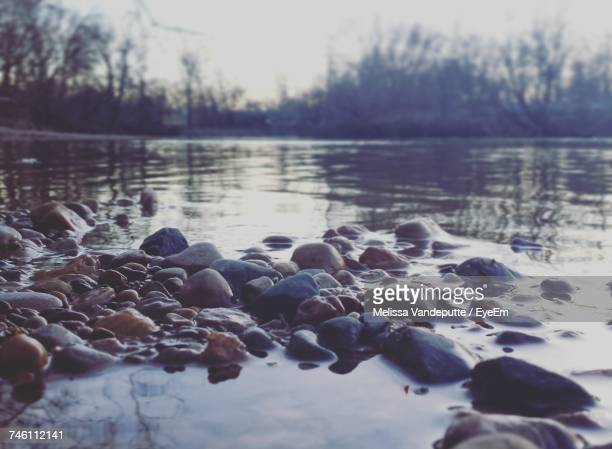close-up of pebbles on lake at sunset - riverbank stock photos and pictures