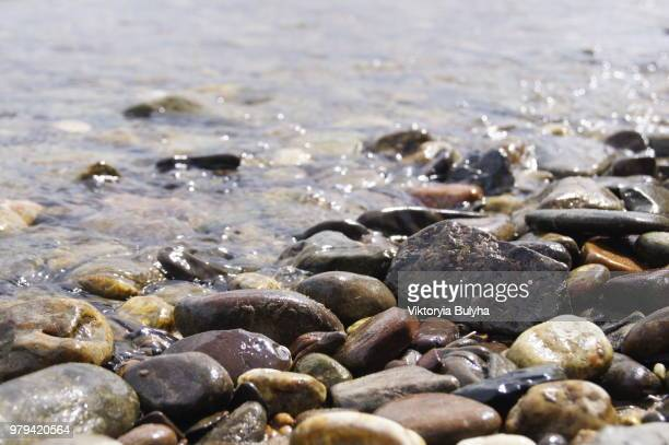 close-up of pebbles on rhine riverbank, bonn, north rhine-westphalia, germany - riverbank - fotografias e filmes do acervo