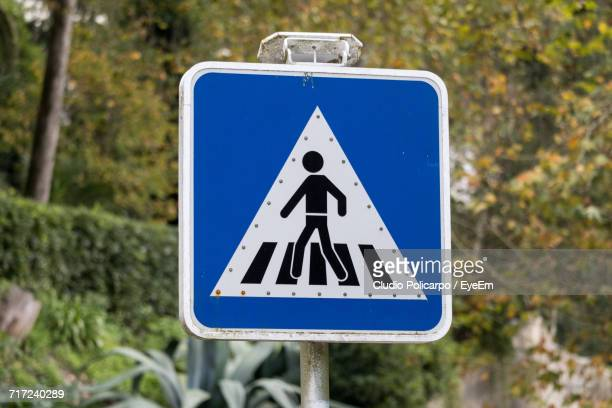 close-up of pedestrian crossing sign with plants in background - pedestrian crossing sign stock photos and pictures
