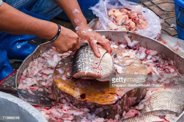 Close-Up Of Person Cleaning Fish