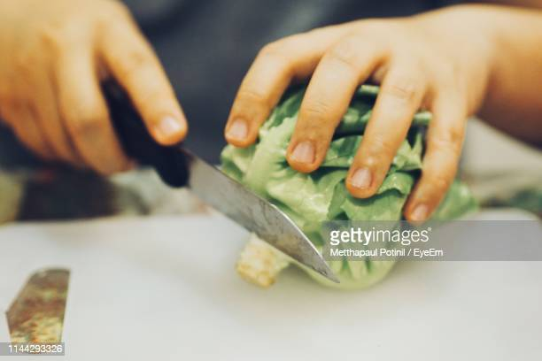 close-up of person cutting vegetable on table - metthapaul stock photos and pictures