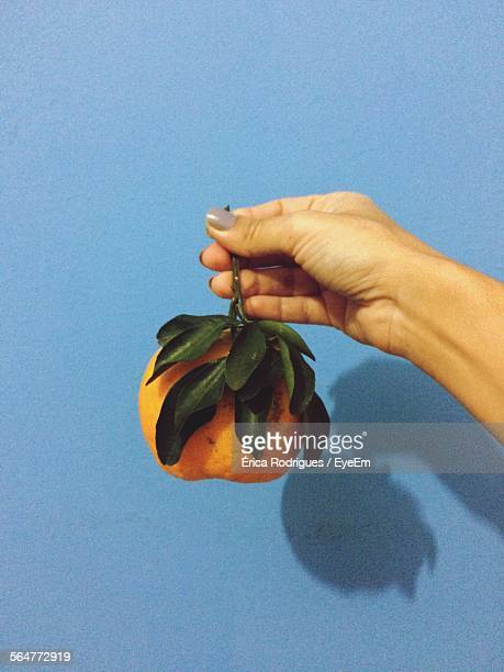 Close-Up Of Person Hand Holding Orange Fruit