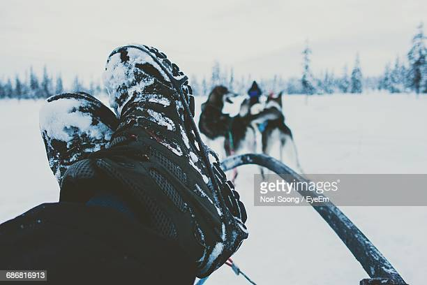 Close-Up Of Person Resting Feet On Sled