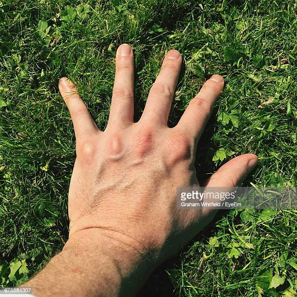 close-up of person standing on grass - human finger stock photos and pictures