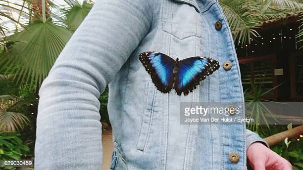 Close-Up Of Person With Butterfly