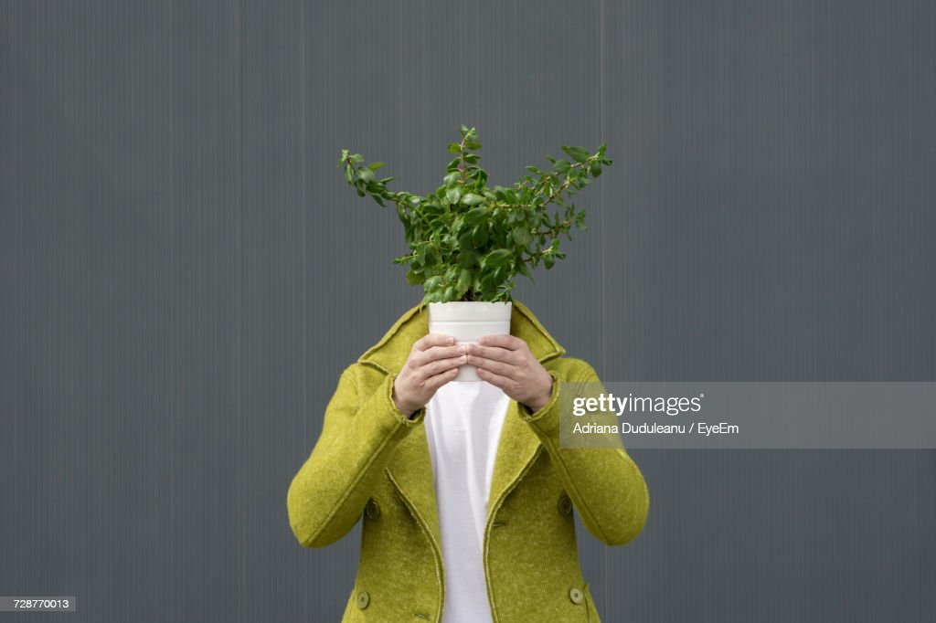 Close-Up Of Person With Potted Plant Against Grey Background : Stock Photo