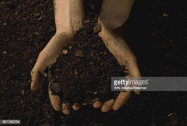 Close-up of persons hands cupping heap of soil