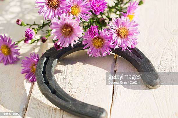 Close-Up Of Pink Flowers And Horseshoe On Table