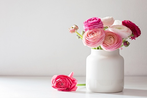 Close-Up Of Pink Ranunculus In Vase On Table - gettyimageskorea