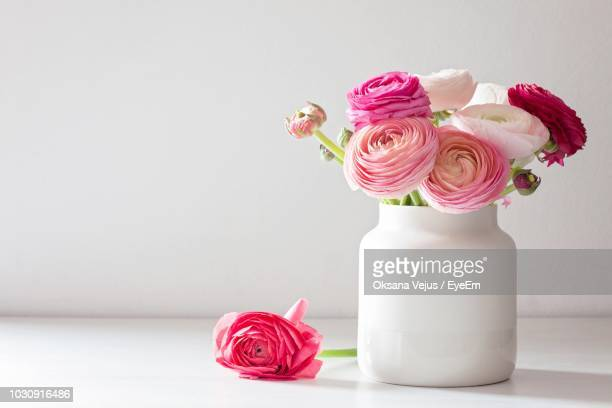 close-up of pink ranunculus in vase on table - 花瓶 ストックフォトと画像