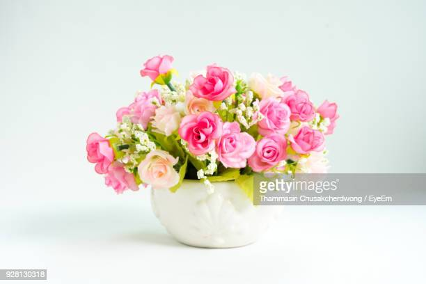 Close-Up Of Pink Roses Against White Background