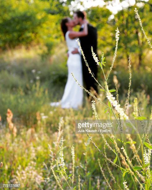 Close-Up Of Plants With Couple Kissing In Background