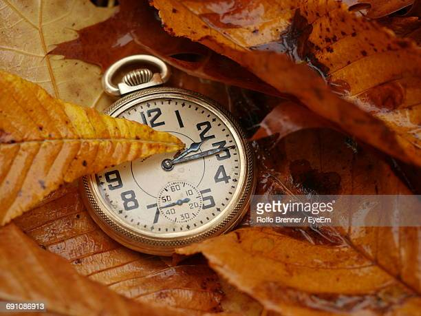 Close-Up Of Pocket Watch In Leaves