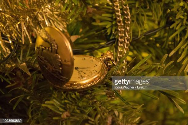 Close-Up Of Pocket Watch On Christmas Tree