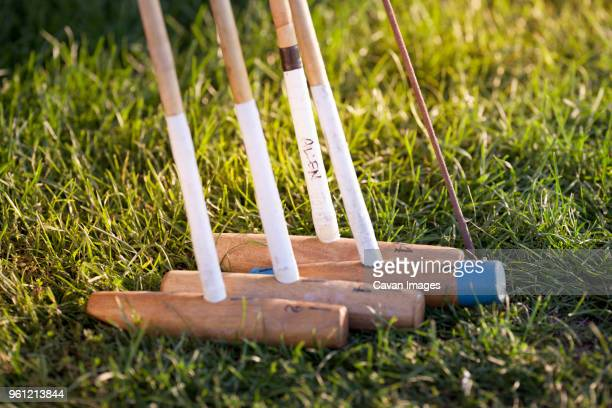 Close-up of polo mallets o grassy field