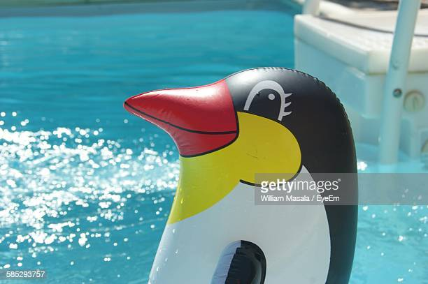 Close-Up Of Pool Raft In Penguin Shape On Swimming Pool